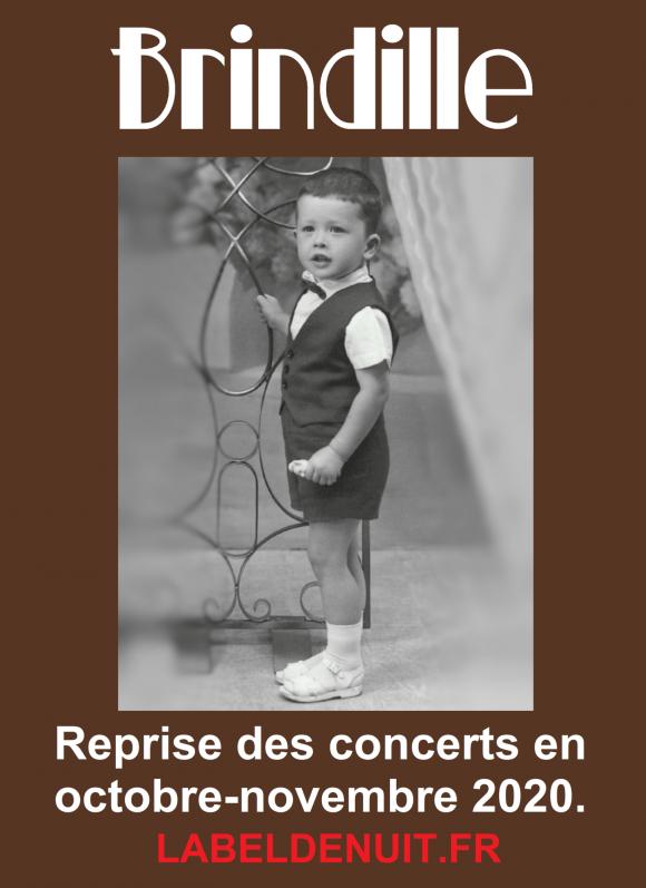 http://brindille-chanteur.cowblog.fr/images/Brindillereprisedesconcertsenoctobrenovembre2020DeconfinementLabeldeNuitAssociation.png