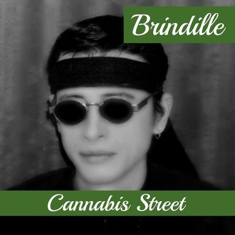 Légalisation du cannabis en France ! Brindille - Label de Nuit