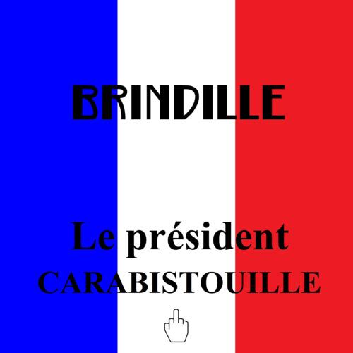 http://brindille-chanteur.cowblog.fr/images/LepresidentCarabistouilleBrindilleProductionsLabeldeNuit.jpg