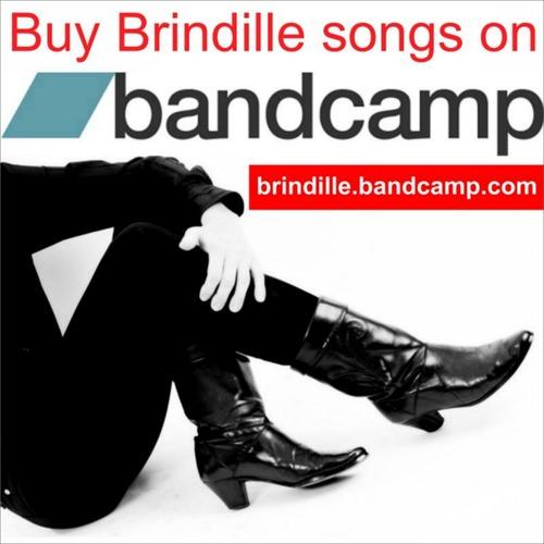 http://brindille-chanteur.cowblog.fr/images/LeschansonsdeBrindillesurBandCampLabeldeNuit.jpg